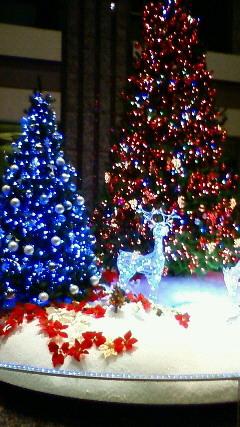 トナカイ輝くクリスマスイルミネーション 201111301655000.jpg
