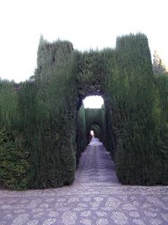 アルハンブラ宮殿庭園DSCF0500.JPG