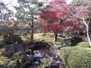 紅葉の由志園DSCF1036.JPG