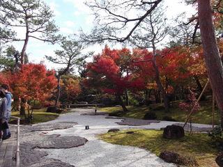 紅葉の由志園DSCF1041.JPG