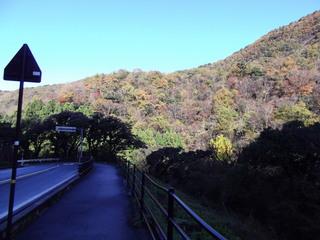 三徳山バス停DSCF1195.JPG